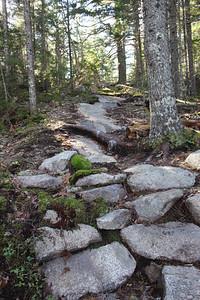 WP_lookout_rock_moss_rocks_110719_AB