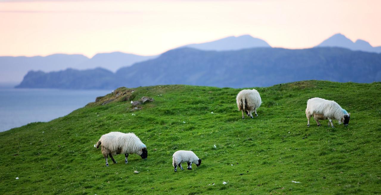Glen Gorm