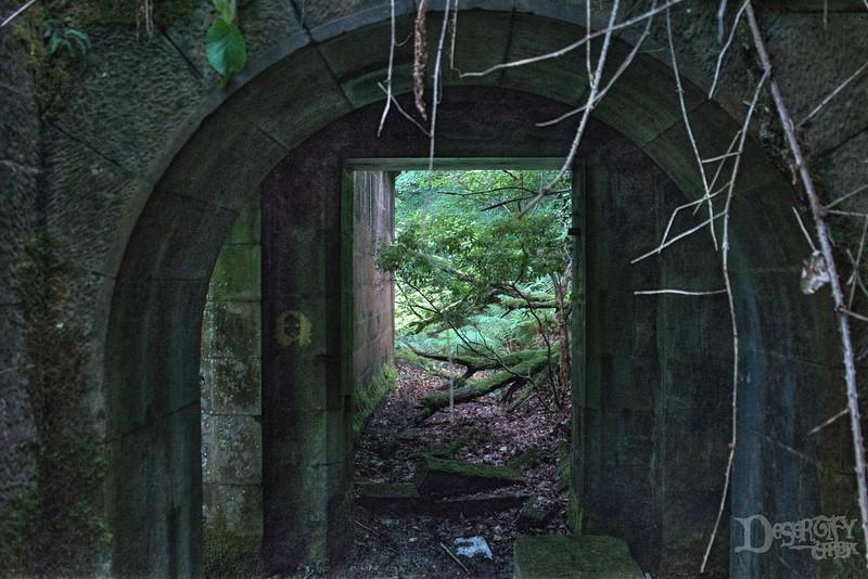 Doorway to Life