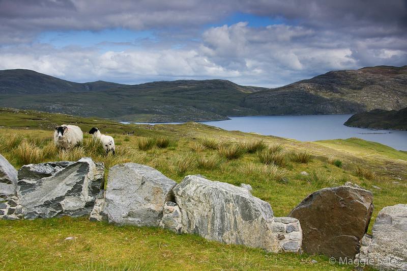 Loch Shiphort, N. Harris