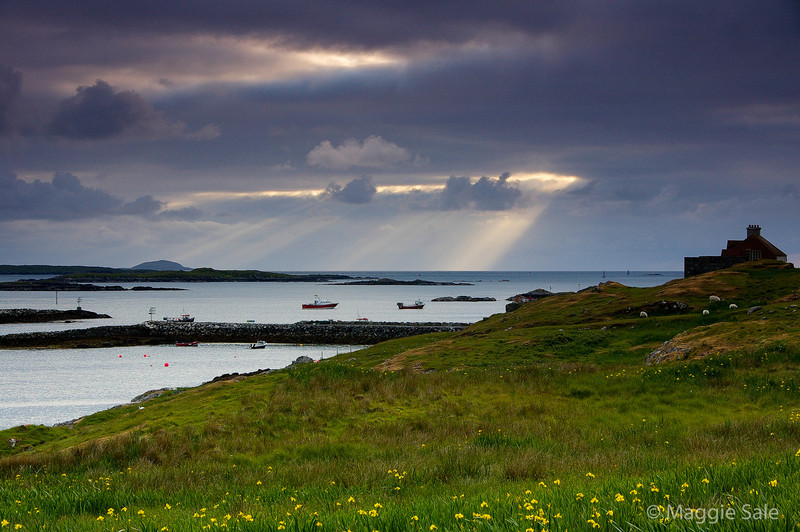 Evening light near Leverburgh, S. Harris