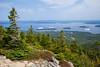 Acadia NP Cadillac Mountain IMG_2781