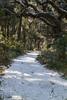 Botany Bay IMG_8930