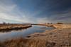 Alamosa NWR (Rio Grande River) IMG_3887
