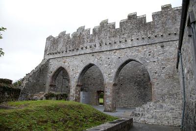 Ardfert Cathedral, Ireland IMG_0590