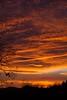 Hayesville (Hinton Center) Sunset IMG_4306