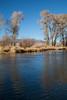 Rio Grande River (CR 17) IMG_4191