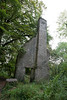 Ballyseedy Wood, Tralee, Ireland IMG_0874