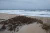 Beach near Pea Island NWR IMG_0720