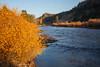 Rio Grande River near South Fork IMG_3634
