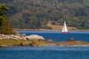 Sailboat, Tremont, Maine IMG_7256