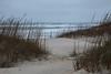 Beach near Pea Island NWR IMG_0718
