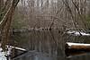 Edisto River at Aiken State Park IMG_0992