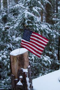 American Flag IMG_1963