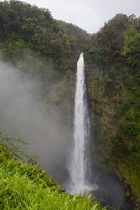Akaka Falls IMG_8480