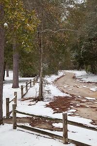 Aiken State Park IMG_1006