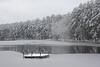 Durant Park Lake, Raleigh  IMG_9191