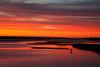 Goose Island State Park IMG_6071