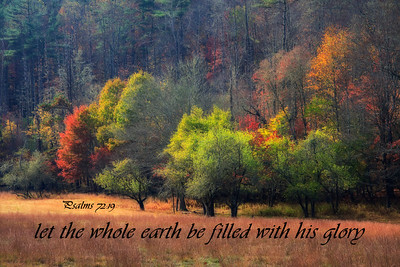 Let the whole earth be filled with His glory