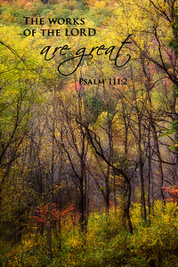 The works of the LORD are great  Psalm 111-2Autumn Forest
