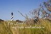 Lighthouse Scripture