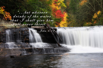 Whoever drinks of the water that I shall give him shall never thirst