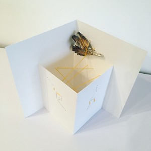 Moth cosmos, silver, yarn and paper sculpture