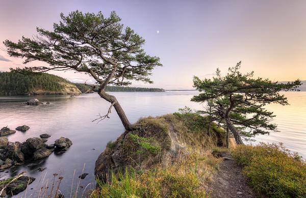 A Place of Zen