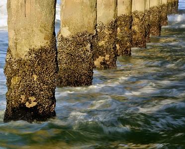 Pier Piling Detail