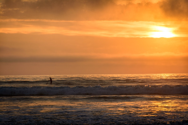 Pacific Paddleboarder