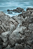 Pacific Grove seashore 9
