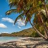 Caribbean Paradise