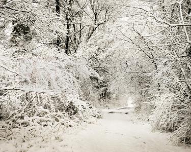 Snowy Road 02-2-2-2