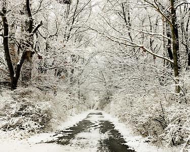 Snowy Road 01-2-2-2