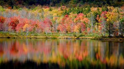 Fall Reflections - NH