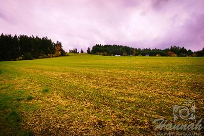 The Colors of Fall  ..... Countryside field  © Copyright Hannah Pastrana Prieto