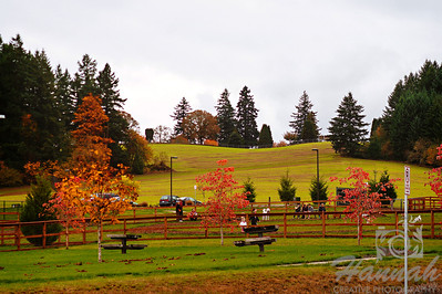 The Colors of Fall  ..... Vast rolling hills  © Copyright Hannah Pastrana Prieto