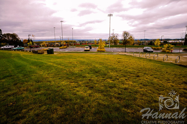 The Colors of Fall  ..... a park on a cold fall day  © Copyright Hannah Pastrana Prieto