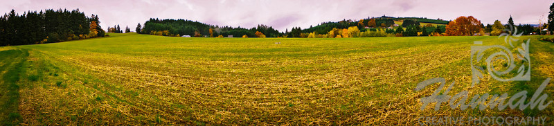 The Colors of Fall  ..... Panorama of a countryside field  © Copyright Hannah Pastrana Prieto