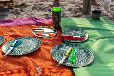 pique-nique à la plage de Brégançon