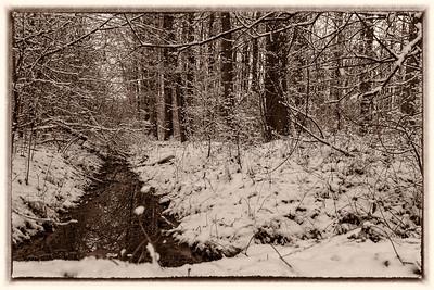 impressions of snow