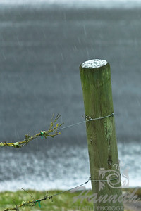 Start of Snow. An image of a single vineyard pole with a little bit of snow on top and some snow flurries at the background.  © Copyright Hannah Pastrana Prieto