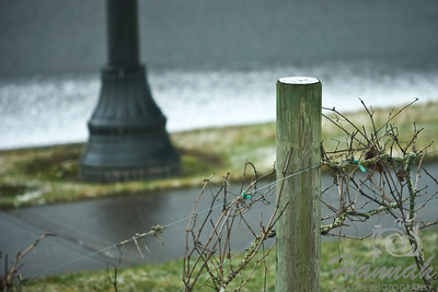 Start of Snow. An image of a single vineyard pole with a little bit of snow on top.  © Copyright Hannah Pastrana Prieto
