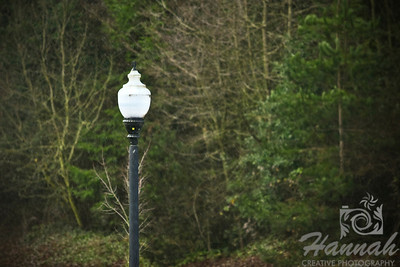 Start of Snow. An image of a single lamp post as snow flurries are beginning to fall at the background.  © Copyright Hannah Pastrana Prieto