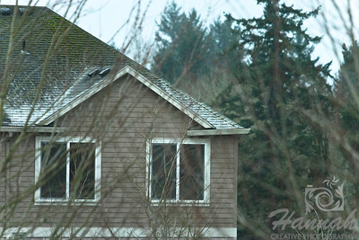 Start of Snow. A roof of a house with very thin snow and some moss on top.  © Copyright Hannah Pastrana Prieto