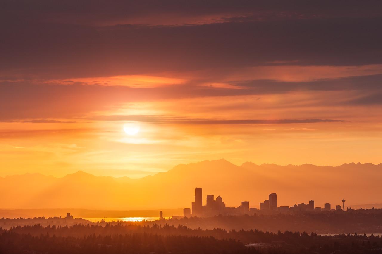 Seattle Sunshine