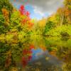 Wayne Johnson,   Autumn Dreamscape