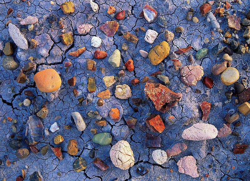 Jurassic Landscape Fragments