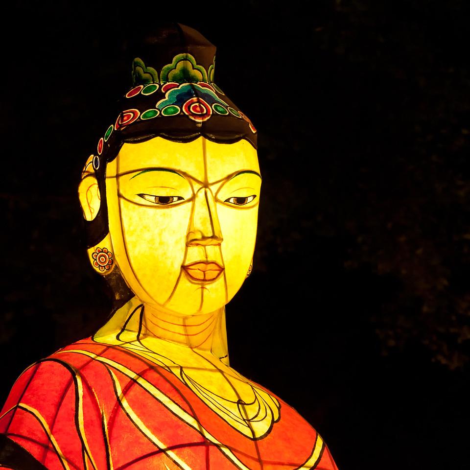 Lantern of a Woman