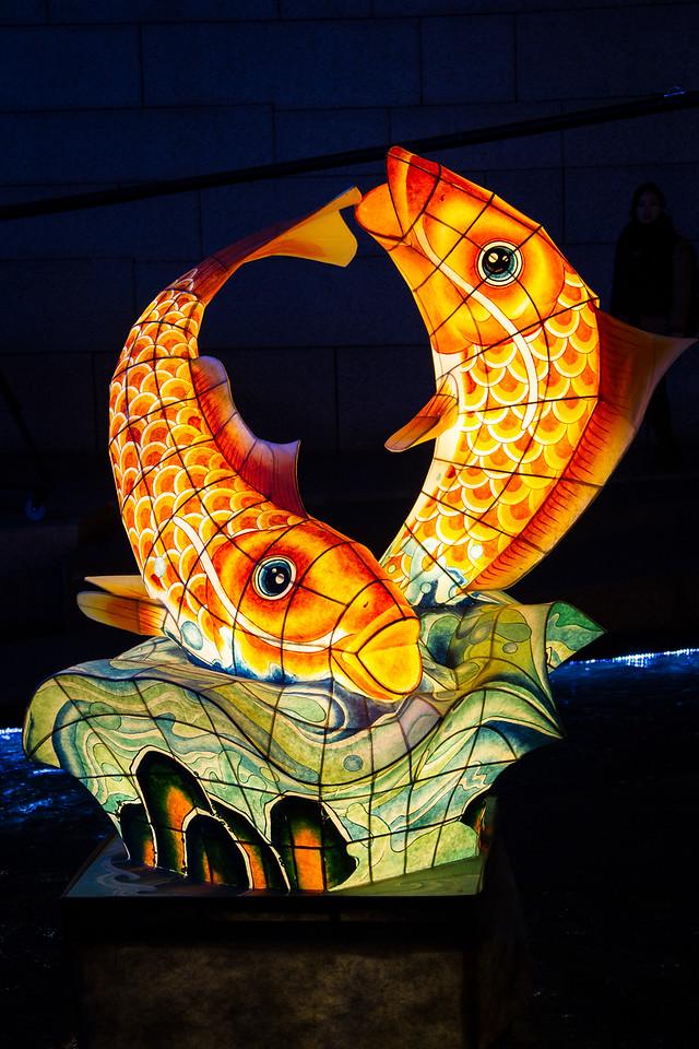 Fish Lanterns in the Cheonggye Stream